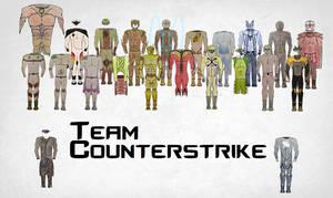 Team Counterstrike