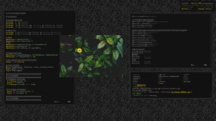 X230 | FVWM2 by UnixMafia