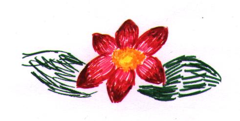 Red flower by vashtijoy