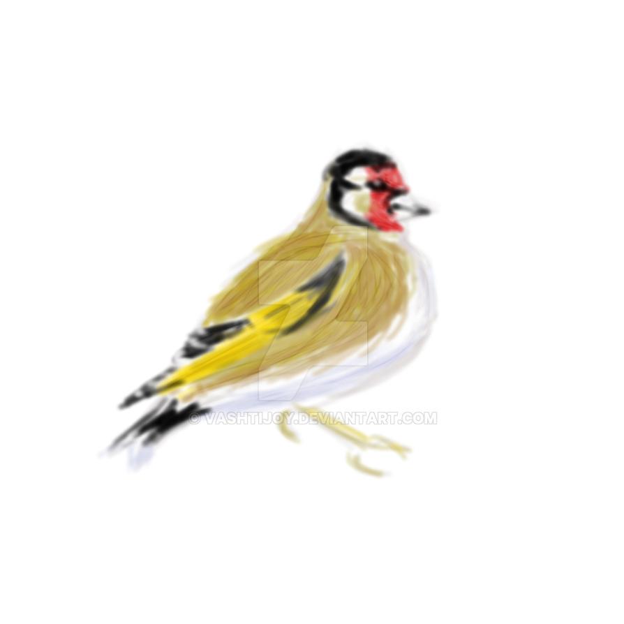 Goldfinch by vashtijoy