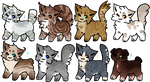 Lowered Prices! (1/8) RSW Cat Adopts  - Batch 3