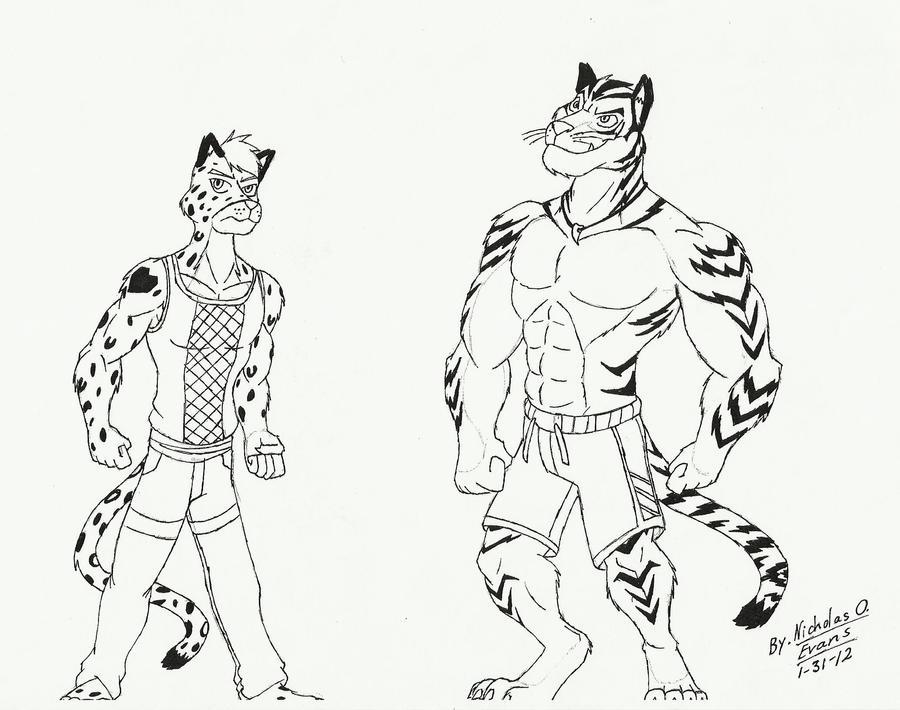 Buff Tiger A_tuff_snow_leopard_and_a_buff ...