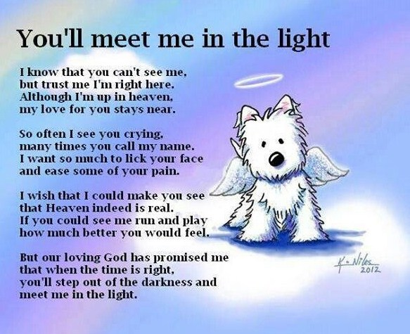 all-dogs-go-to-heaven-quotes-and-Poem by Astarsia
