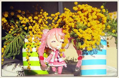 Vocaloids: SakuraMiku in between flowers1 by jjblue1