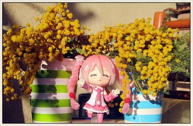 Vocaloids: SakuraMiku in between flowers2 by jjblue1