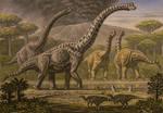 Brachiosaurus, Camarasaurus.