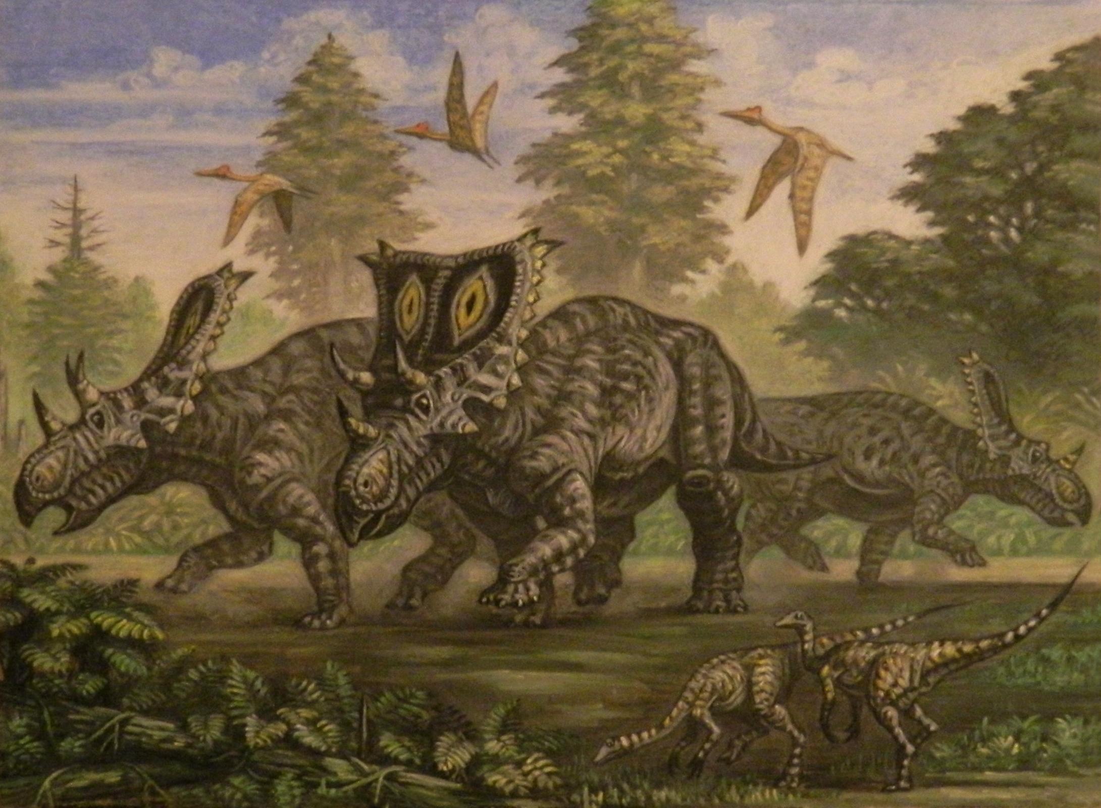 Chasmosaurus -Pastori by PaleoPastori.devi on @DeviantArt ...
