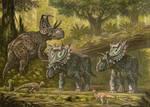 Machairoceratops,Spiclypeus,Texacephale.