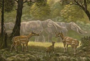 Synthetoceras, Platybelodon by ABelov2014