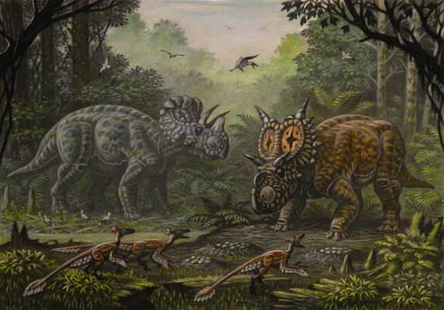 Wendiceratops, Xenoceratops, Saurornitholesthes