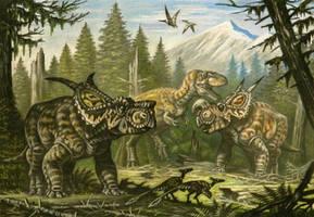 Achelousaurus, Einiosaurus by ABelov2014