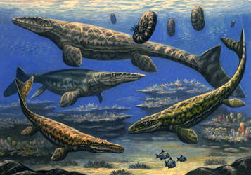 Mosasauridae by ABelov2014