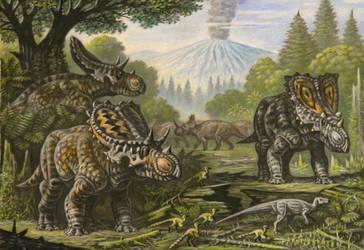 Mercuriceratops, Chasmosaurus belli by ABelov2014
