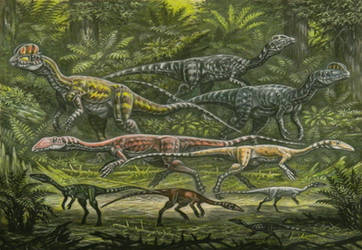 Primitivr Theropods by ABelov2014