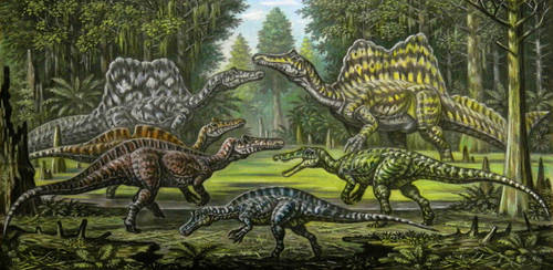 Spinosauridae (var.2) by ABelov2014