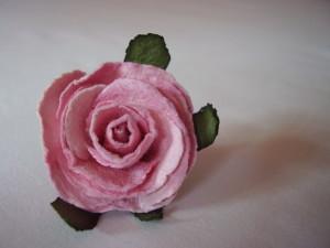 rose-renee's Profile Picture