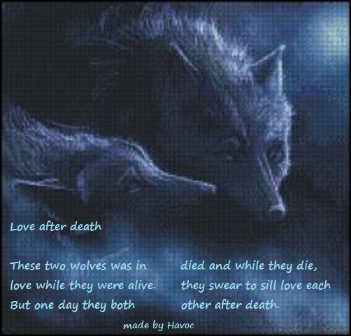 Love Quotes After Death. QuotesGram