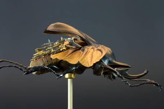 MeCre - Megasoma Actaeon