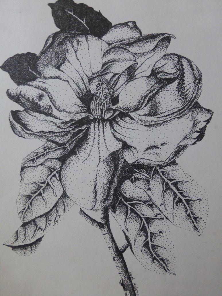 Flower by JTBeast