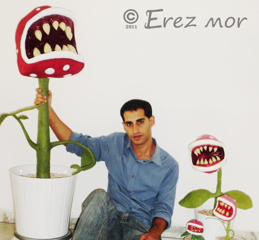 Carnivorous plants by erez-mor