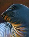 Seal by FreyjaSig