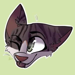CarelessCuriosity's Profile Picture