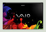 colorful_sony vaio winner