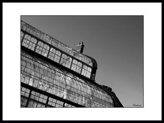glasnevin glasshouse by eculnud