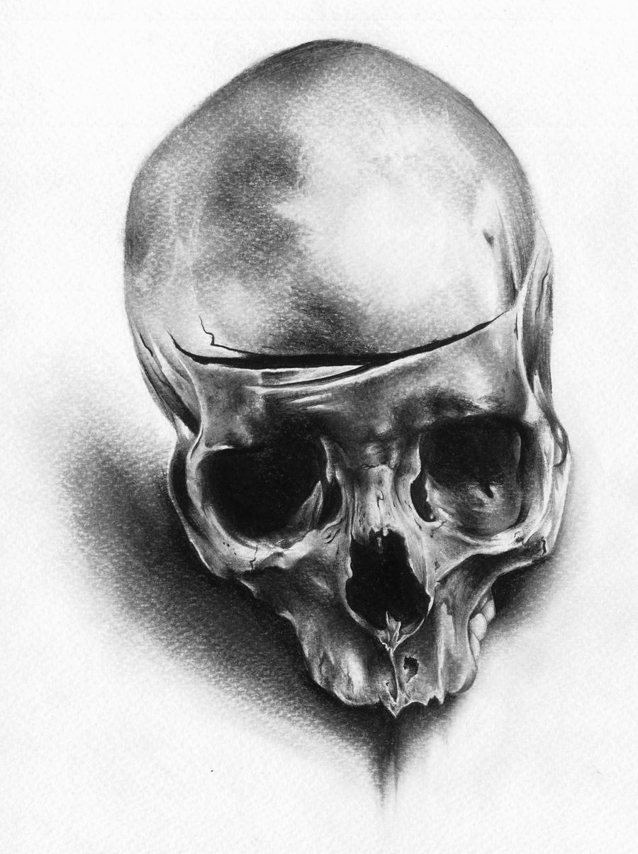 Skull by JoshuaBeatson...
