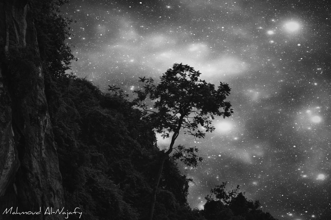 As the sky illuminates my lonely tree BW by P3rL-Saint