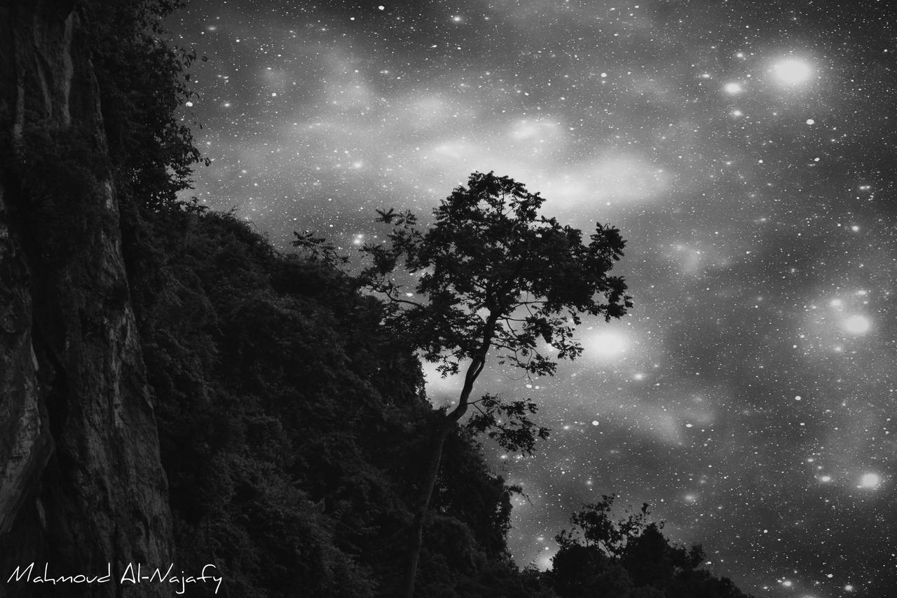As the sky illuminates my lonely tree BW by P3rL-Saint