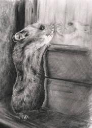 Furry Friend by MaasikaVaarika