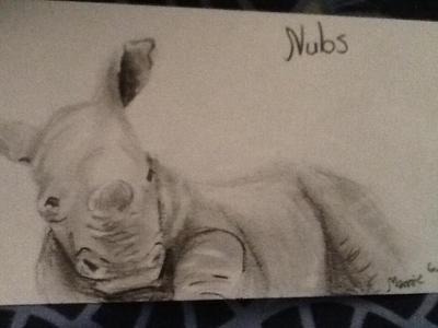 Nubs the baby rhinoceros  by lunacrow14
