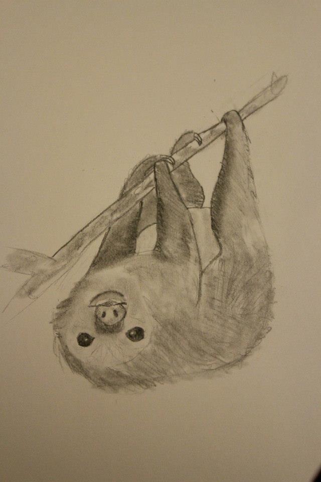 Sloth by eillahwolf