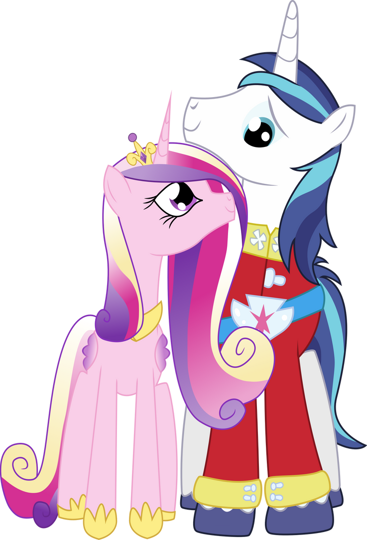 Princess Cadence And Shining Armor Vector Princess Cadence And Shining
