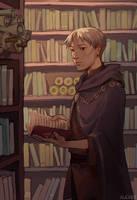 Having Fun Isn't Hard When You've Got a Library Ca by alizawren