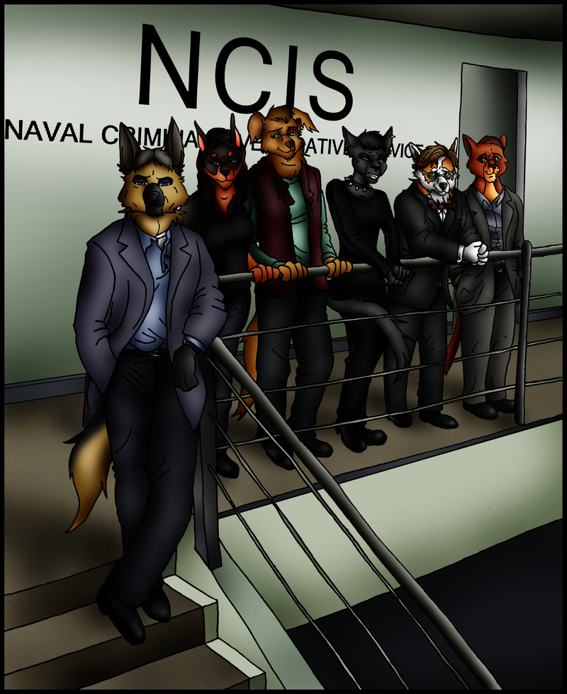 NCIS by Lady-Hannibal