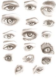 Pencil Eyes Drawings by ApprenticeOfArt