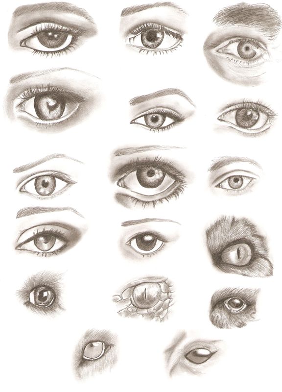 Pencil Eyes Drawings by ApprenticeOfArt