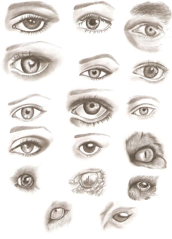 Pencil Eyes Drawings By ApprenticeOfArt On DeviantArt