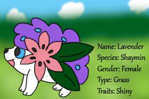 Lavender the Shaymin by RDSR