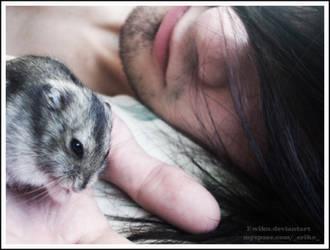 Evil hamster by ewiku