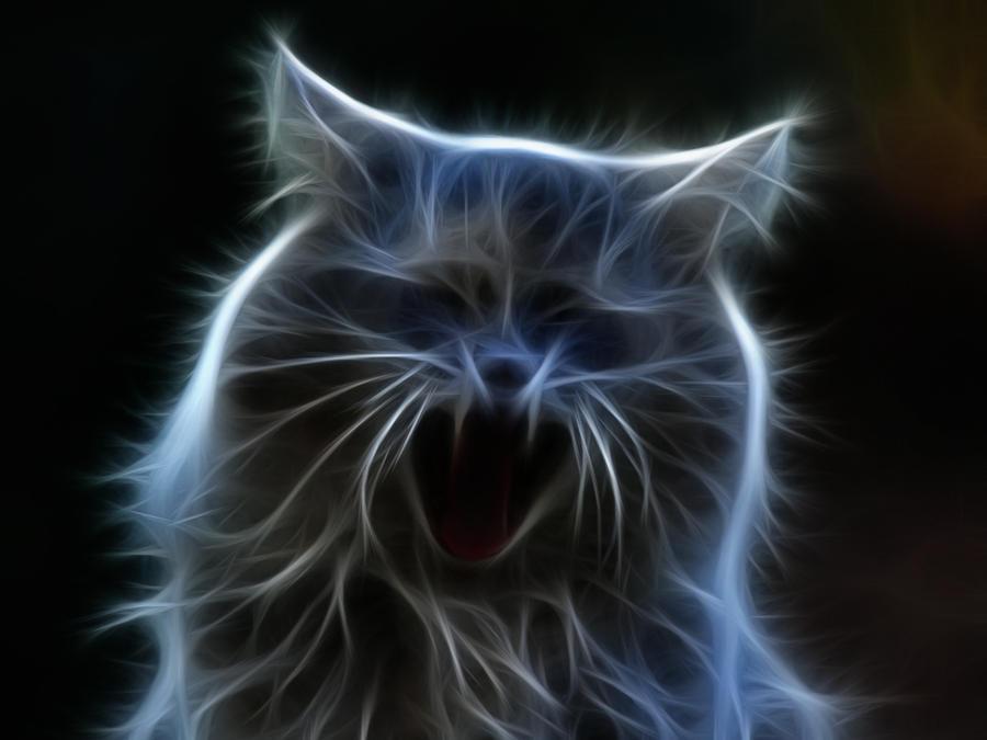 laughing animal wallpaper - photo #13