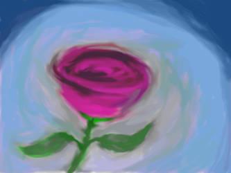 Rose by quakshot