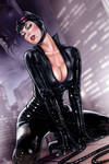Catwoman t089s