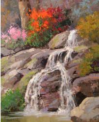Hidden Falls by rooze23