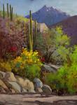 Hills of Tucson