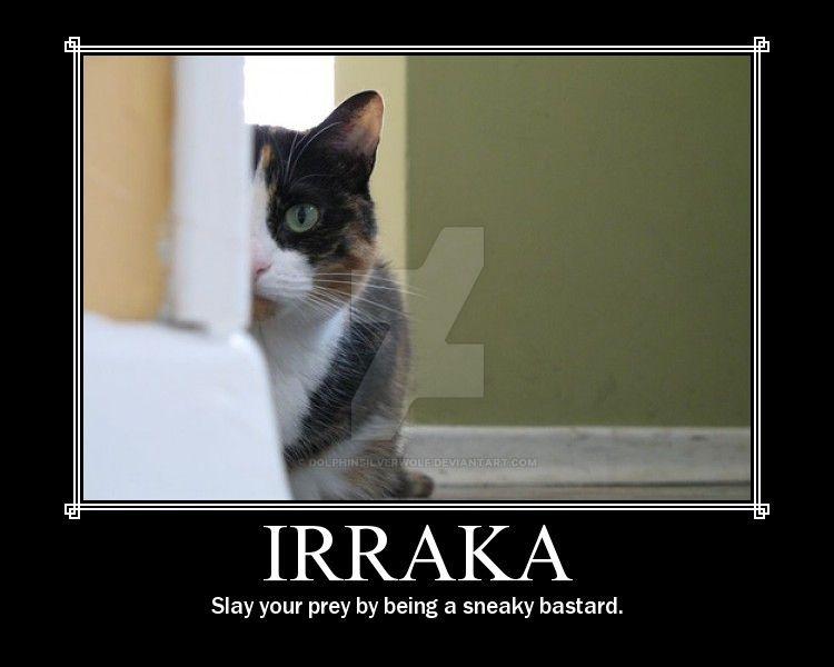 nWoD Kitten Motivator: Irraka by DolphinSilverwolf
