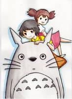 Totoro by Nah-i
