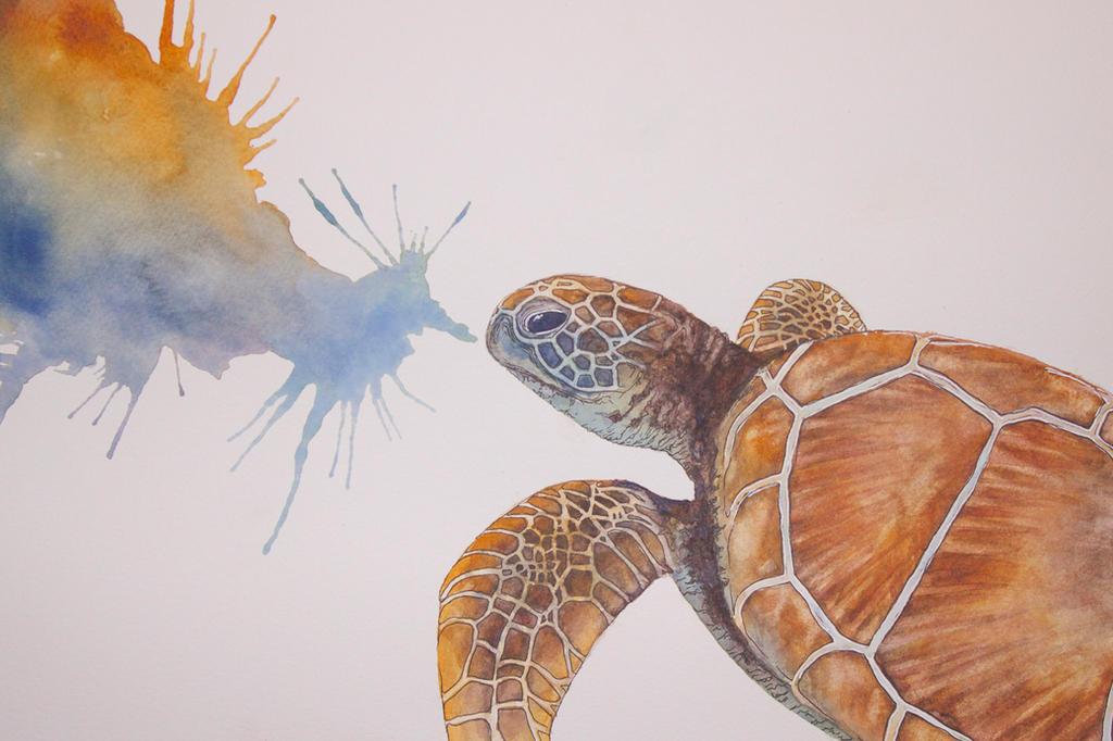 Sea Turtle by eriksherman